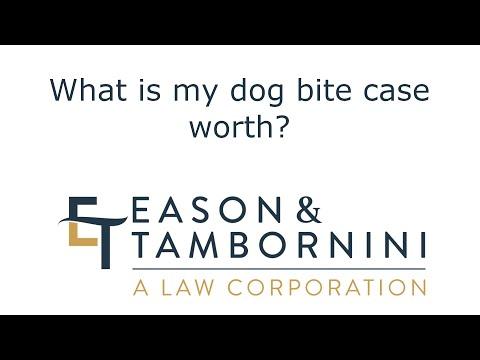Sacramento Dog Bite Lawyer: What is my dog bite case worth?