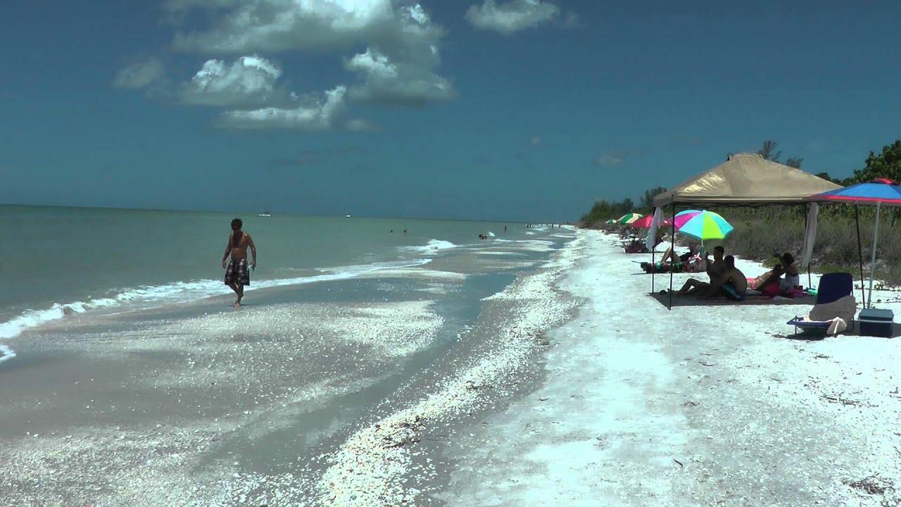 Shelling at high tide on sanibel island beach youtube shelling at high tide on sanibel island beach nvjuhfo Gallery