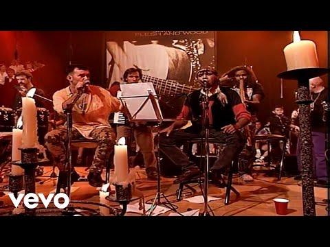 Jimmy Barnes - We Could Be Gone (Flesh & Wood)