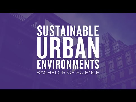 Major Insight: Sustainable Urban Environments