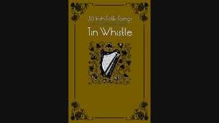 01 the good ship kangaroo 30 irish folk songs for tin whistle
