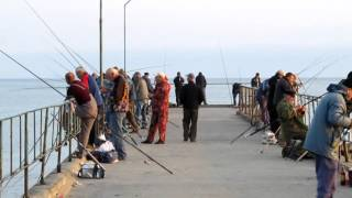 Сарган - рыбалка в Чёрном море(Рыбалка в Чёрном море. Подключится к партнёрской программе и зарабатывать деньги на Ютубе вы можете вот..., 2015-11-23T22:01:58.000Z)