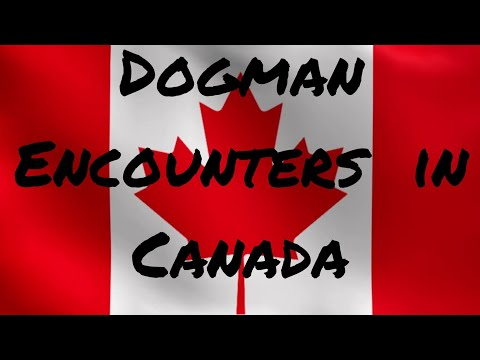 DOGMAN Encounters in Canada
