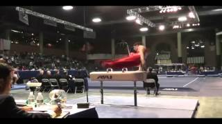 Pommel horse - Driggs with 1/2 turn (E?)