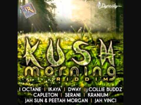 Collie Buddz - I Feel So Good (Kush Morning Riddim) 2012