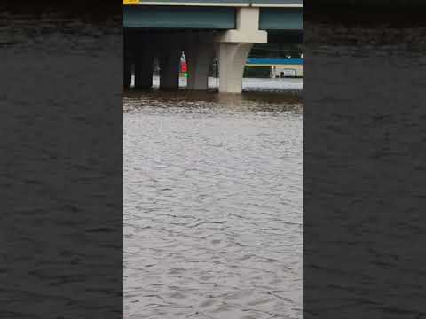 Hurricane Harvey, Houston 59 North Splendora tx. 08/28/2017