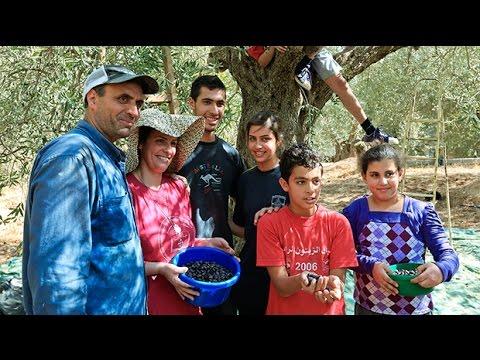 Rick Steves' Europe Preview: Palestine