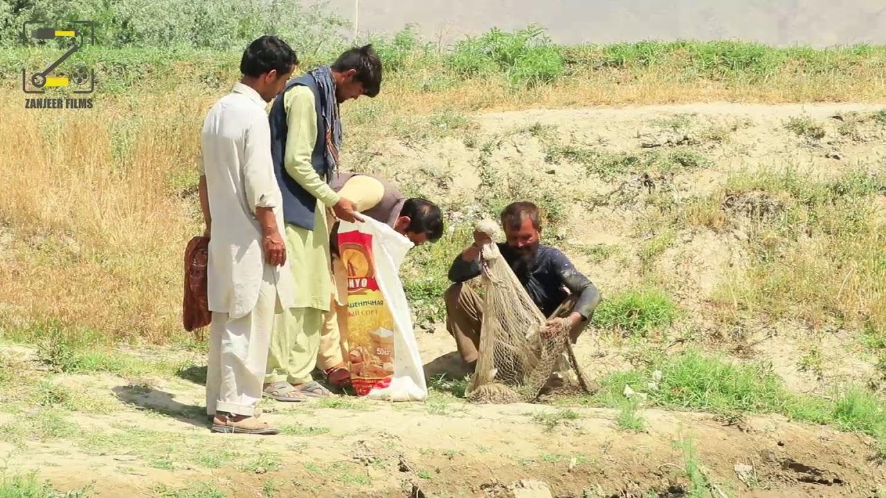 تفریح و سرگرمی ماهی گیری سردار نظری