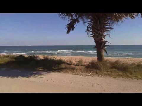 Along Florida's coast Flagler beach