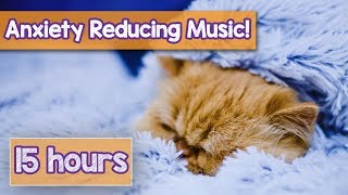 NEW MUSIC FOR ANXIOUS CATS AND KITTENS! Deep Relaxation Music for Depressed and Anxious Cats!