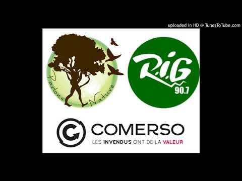 PARTIE 1 - Interview Céline Rigaudie Radio RIG Bordeaux Emission Parlons Nature 02042018 PARTIE 1