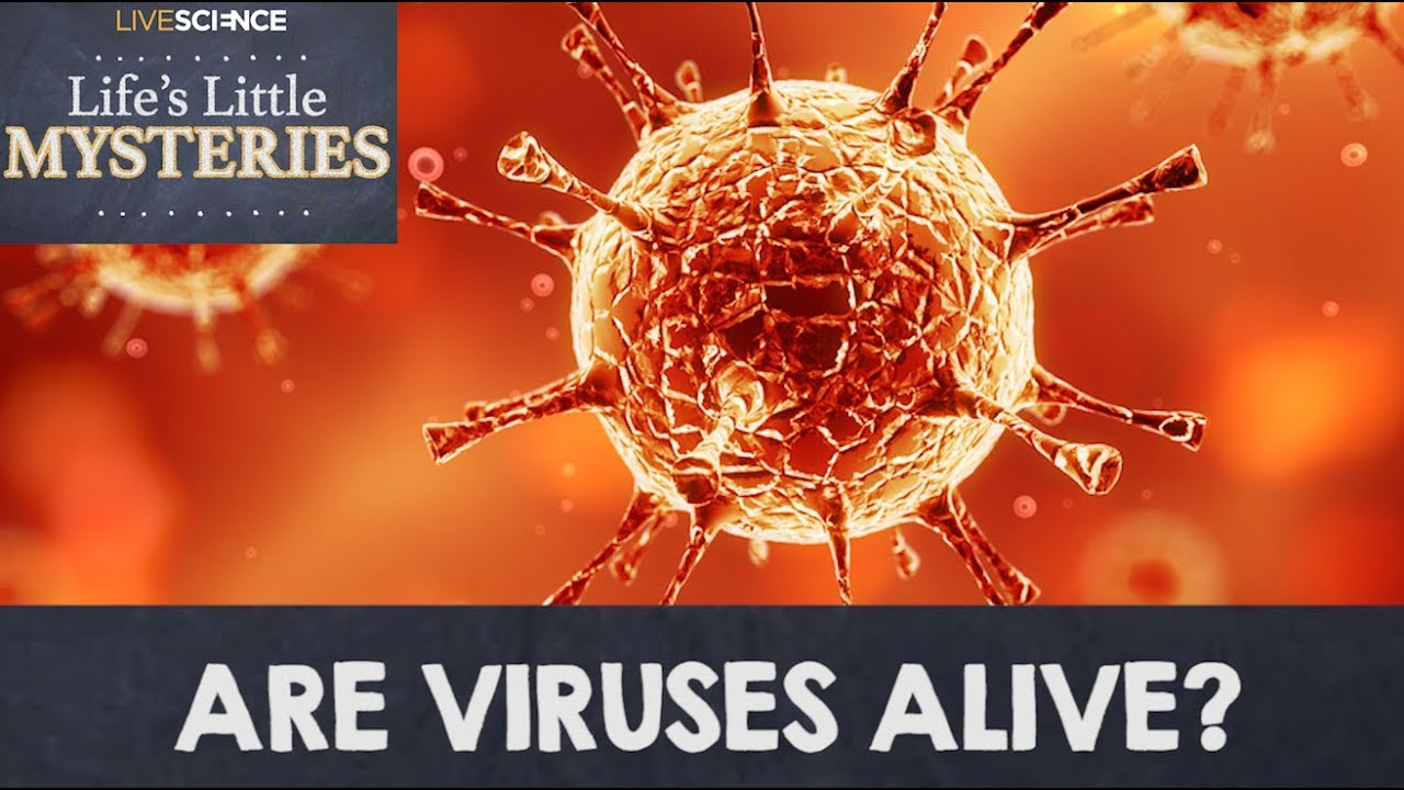 why are viruses alive