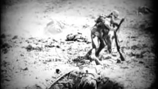 Документальный фильм National Geographic  Властелин Колец  Фильм о Фильме