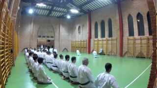 Kangeiko 2013 (JKA TLS - FR)