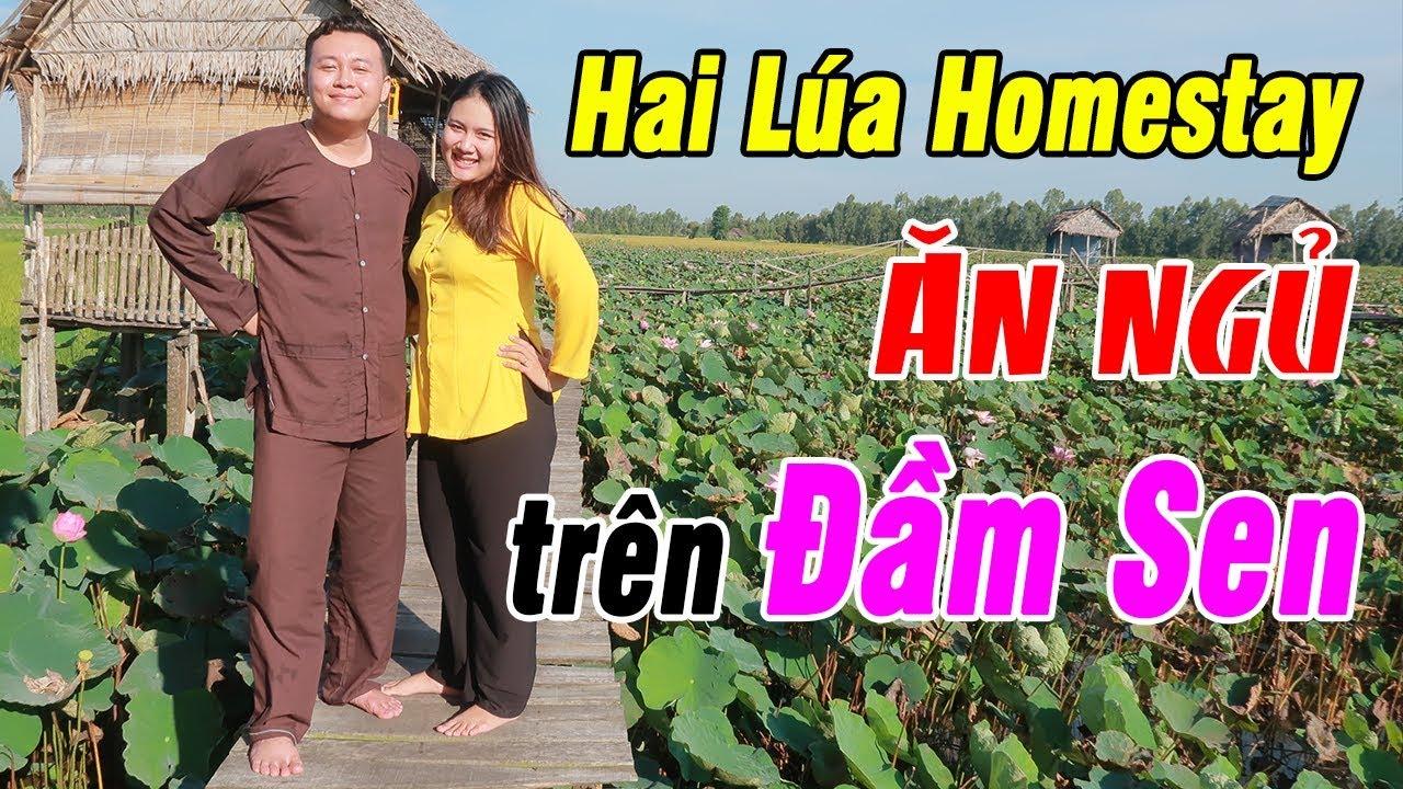 Trải Nghiệm Du Lịch Sinh Thái Hai Lúa Homestay - Ngủ bụi trên Đầm Sen - Du Lịch Ăn Uống Đồng Tháp