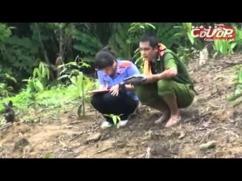 Cận cảnh khám nghiệm hiện trường vụ thảm sát 4 người ở Yên Bái - Cuop.vn