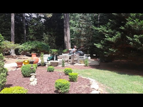 Best Mosquito Control Company Raleigh