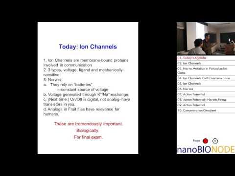 Biophysics 401 Lecture 22: Ion Channels