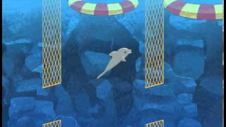 Выступает Дельфин 3