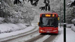 HD OMSI 2 - Bus Simulator - Carriera Cumendiana - Gameplay ITA #1