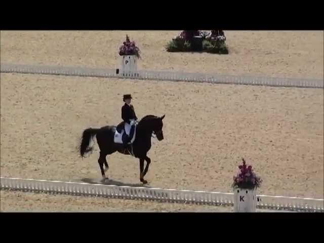 Desperados Hannover Dressage Stallion By De Niro Www Equine Evolution Com Youtube