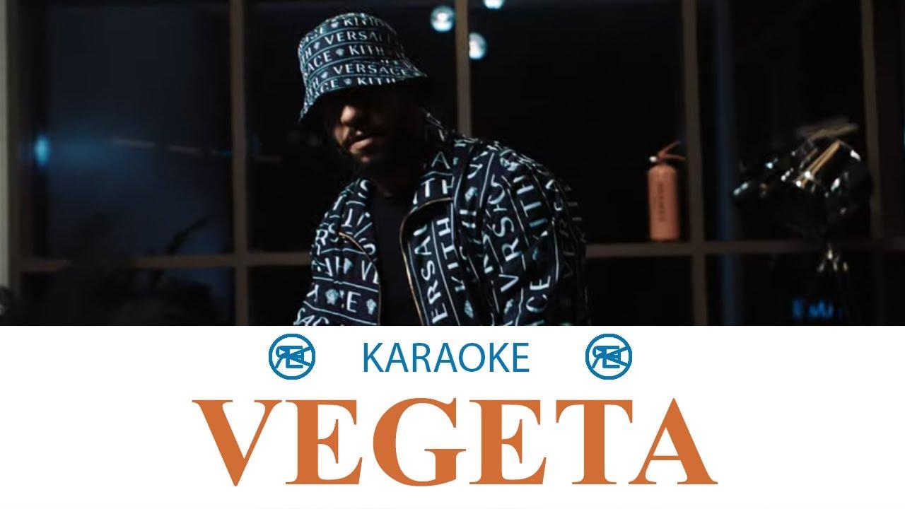 Lacrim - Végéta | Karaoké, instrumental cover
