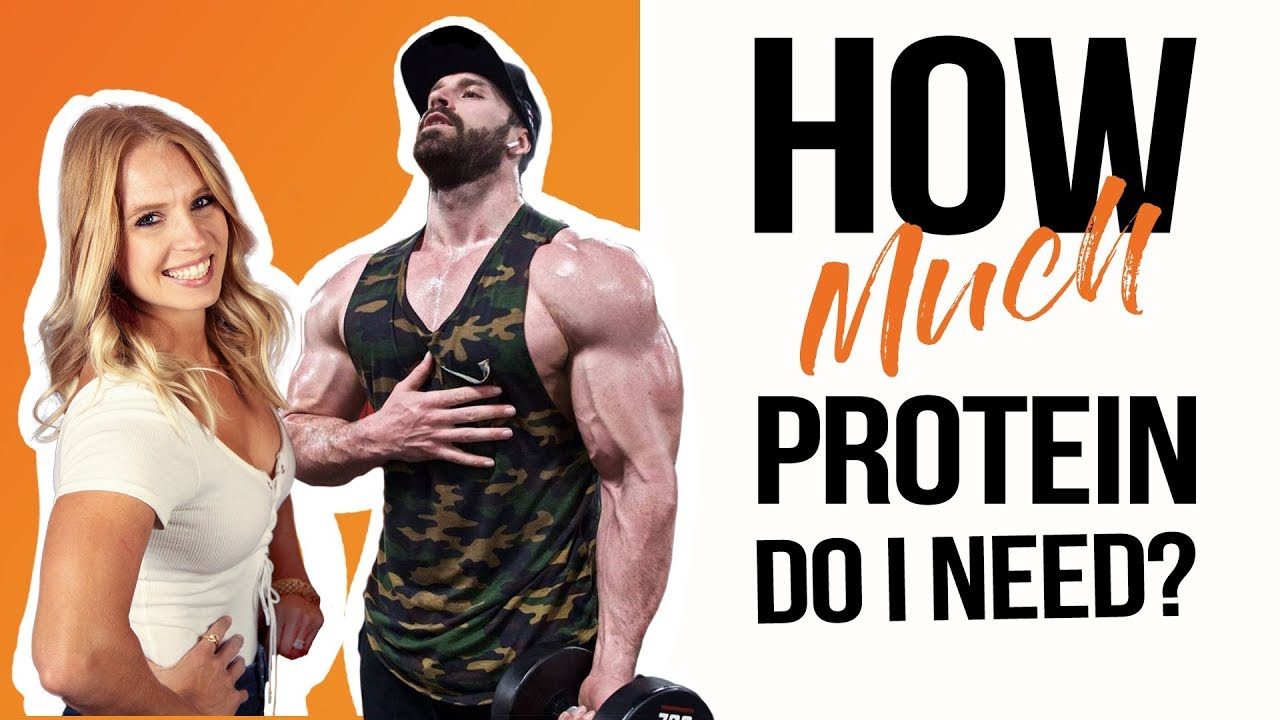 How Much Protein Do I Need To Lose Weight