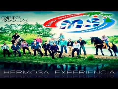Banda Sinaloense MS de Sergio Lizarraga - Hermosa Experencia (Single 2013)