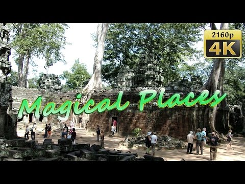 Ta Prohm, Angkor, Siem Reap - Cambodia 4K Travel Channel