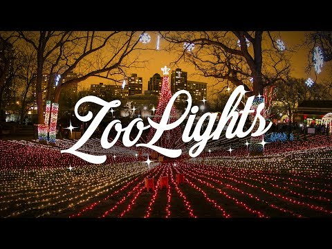 Light up Your Holidays with ZooLights | ZooLights at Lincoln Park Zoo