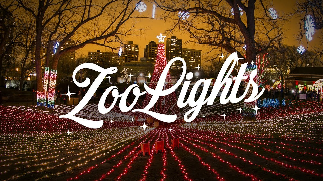Zoo Lights Lincoln Park