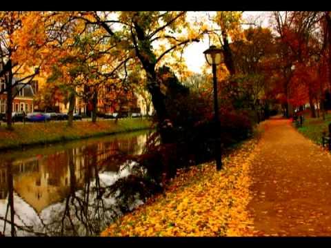Осень ё-моё(Алексей Семиврагов - Олег Корчагин)