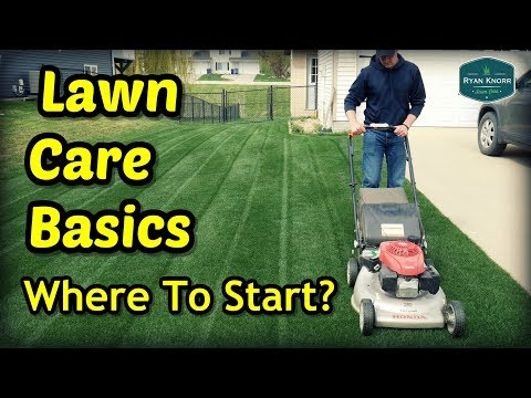 Lawn Care Basics - Where To Start?