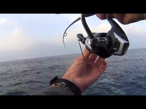 Shore jigging. Tuna attack. 11.05.2016