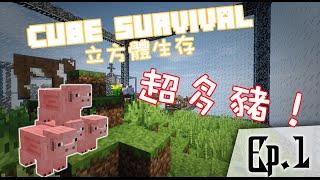 Minecraft 當個創世神 - 立方體生存 Ep.1 w/ Feather Akira 到處都是豬!