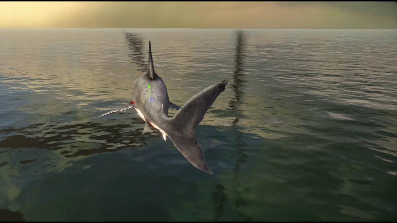 De Leon VR Game - Marine animals animation test