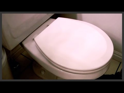 How To Replace A Toilet Seat Youtube