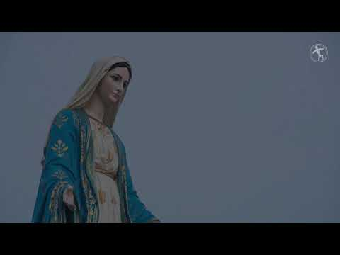 'Weeping' statue of Mary investigated by N.M. diocese