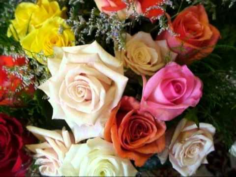 Япония миллион алых роз