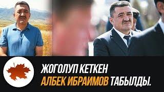 Жоголуп кеткен Албек Ибраимов табылды.