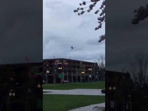 Urban helicopter and Cherry blossoms