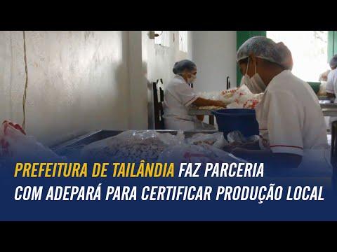 Prefeitura de Tailândia faz parceria com Adepará para certificar produção local