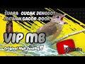 Cucak Jenggot Suara Mewah Gacor  Mp3 - Mp4 Download