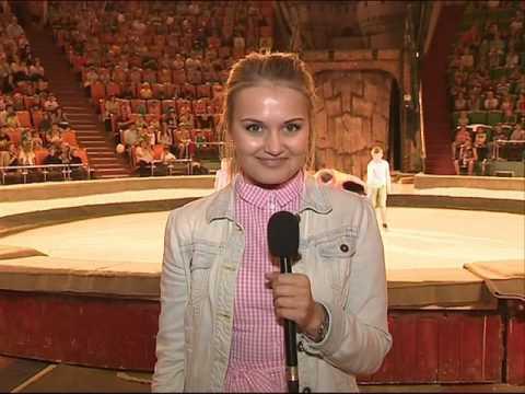 День защиты детей в Ярославле: цирковые представления, концерты и поездка на детской железной дороге