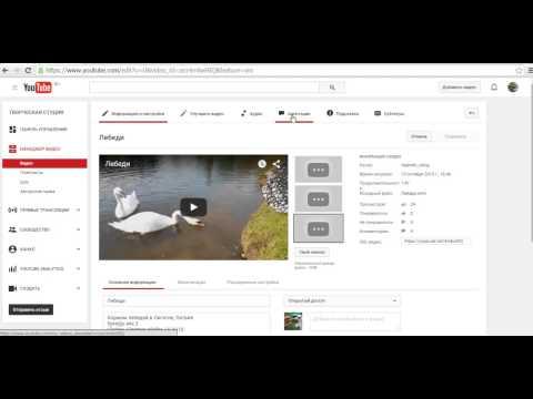 Как смотреть свои видео не нарушая правил YouTube