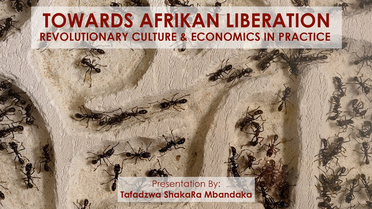 Towards Afrikan Liberation: Revolutionary Pan-Afrikan Culture & Economics in Practice