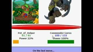 Neopets - Commander Garoo Battle