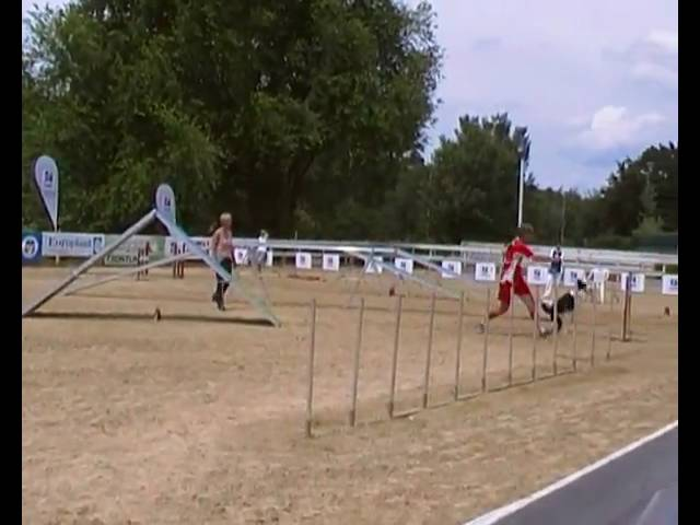 aragorn agility domenica agility dog internazionali d'italia 2010 petrademone mucelli.MP4