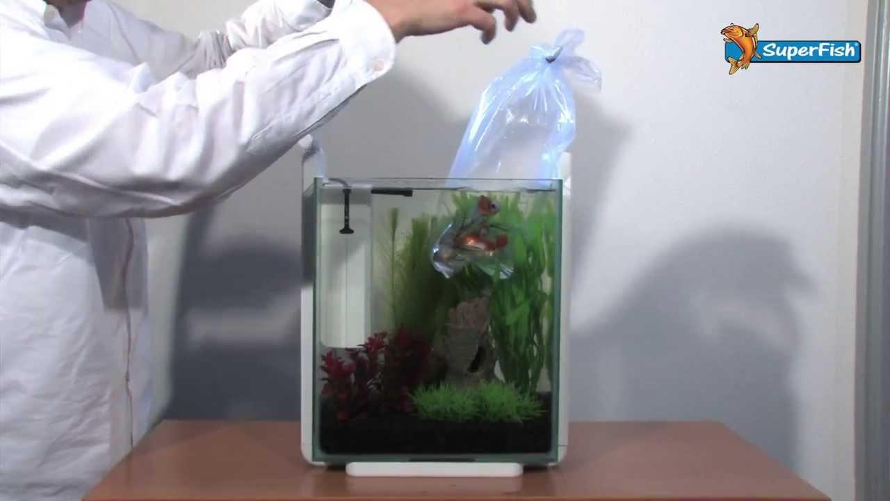 Superfish aquarium fish tank aqua 40 - Superfish Home 25 Xl Aquarium