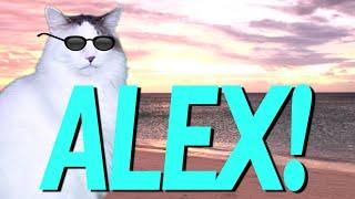 HAPPY BIRTHDAY ALEX! - EPIC CAT Happy Birthday Song